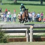 horse-jump-300x199.jpg