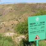 Israel-1102.jpg
