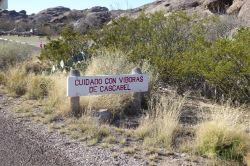 New Mexico (135)